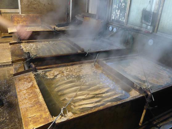 鰹節 煮熟