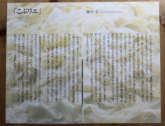 奥井海生堂パンフレット